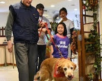 Link's partnership with Animals Asia will provide animal assisted therapy to over 500 Hong Kong senior citizens