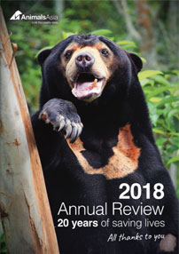 2018 Annual Review