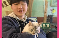Animals Asia helps rehabilitate and rehome 14 abandoned breeding cats in Guangxi, China