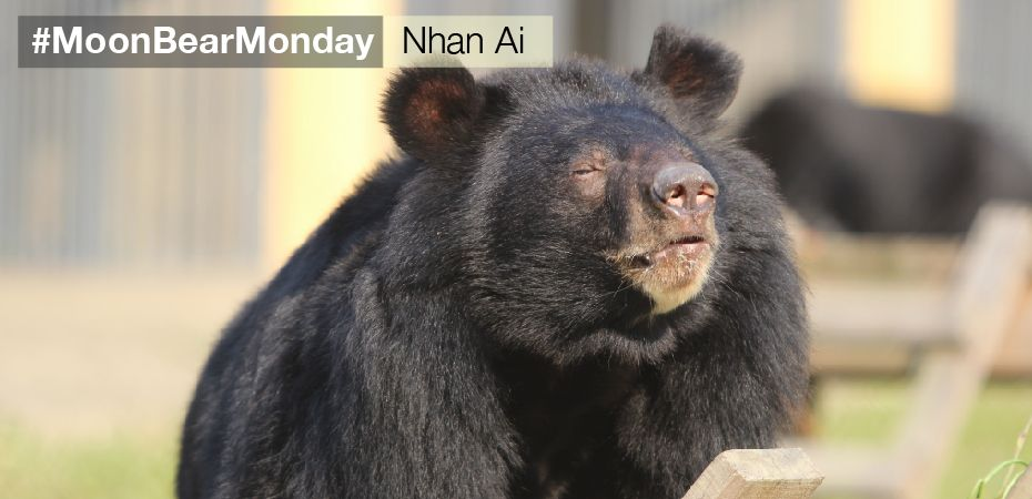 Caged for 14 years – take a look at Nhan Ai now