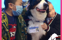 Professor Paws is back! The intrepid team teaches local families about the joy of companion animals and responsible dog care