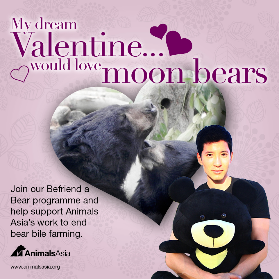 My dream valentine would love moon bears