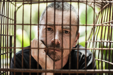 Simon in a cage for Animals Asia
