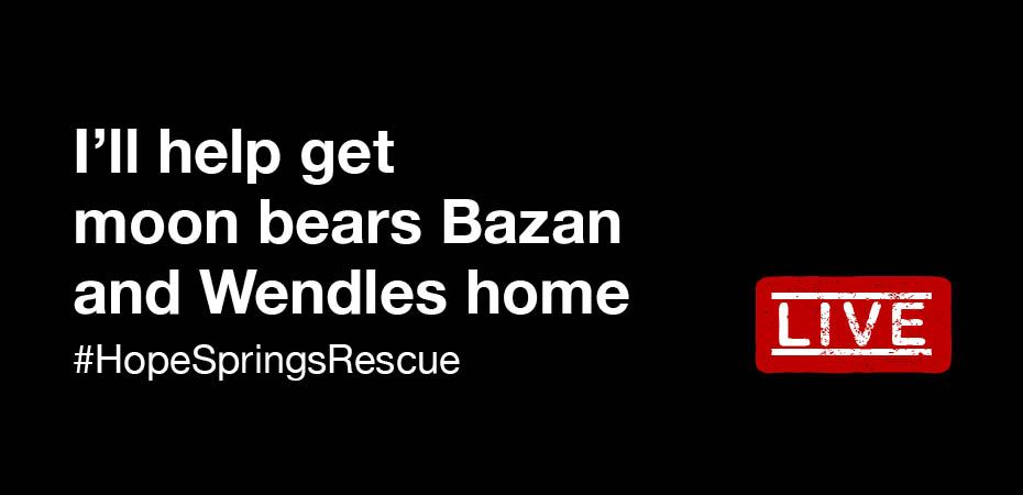 LIVE: Follow the #HopeSprings Bear Rescue