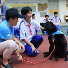 Chinese high schools to offer official animal welfare module for the first time ever