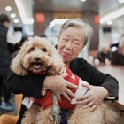 Dr Dog Programme Going Strong in China