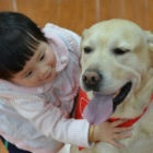 New generation of therapy animals makes the grade