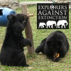 Explorers Against Extinction support Animals Asia's effort to end bear bile farming in Vietnam for good.