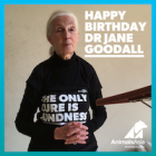 One life: A celebration of Dr Jane Goodall