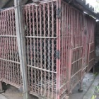 BREAKING NEWS: Animals Asia to rescue eight bile farm bears in Vietnam