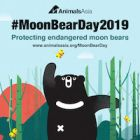 #MoonBearDay2019: LIVE!