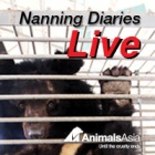 Nanning Diaries Live: The Vet Team Arrive