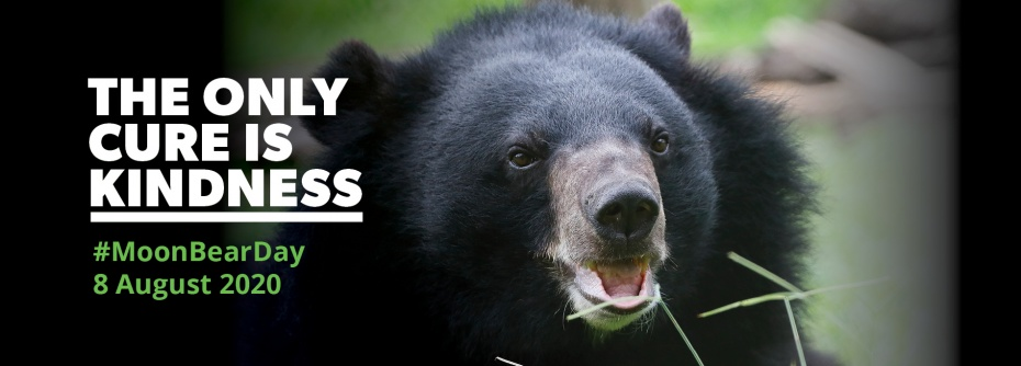 Animals Asia - Together we can rescue the last caged bears in Vietnam
