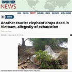 Vietnam told - take a lead and retire your elephants