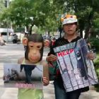 Think China doesn't care about animals — these incredible young people will change your mind
