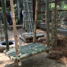When resources are limited – endless love is needed to help rescued bears