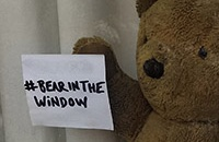 #BearInTheWindow pops up all across the world!