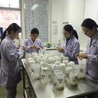 China vet training: 97 per cent had no concept of animal welfare