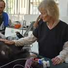 Animal welfare icon Virginia McKenna OBE adopts rescued moon bear