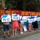 "Chinese students pledge not to watch ""Blackfish"" perform"