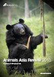 AA Review 2013