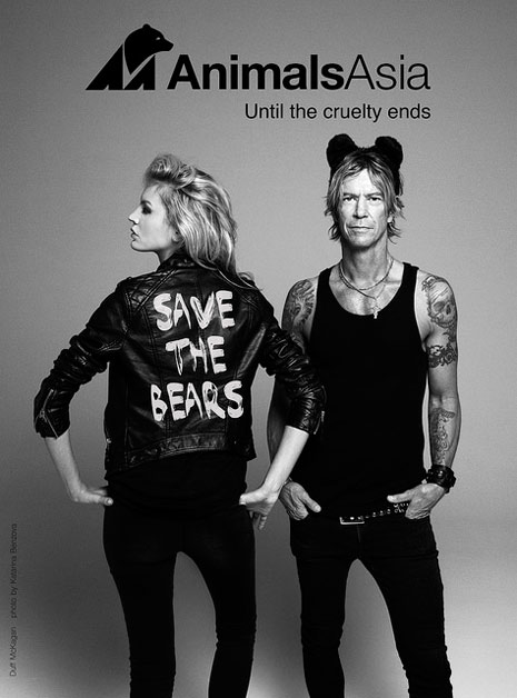 Image result for duff mckagan animal welfare images